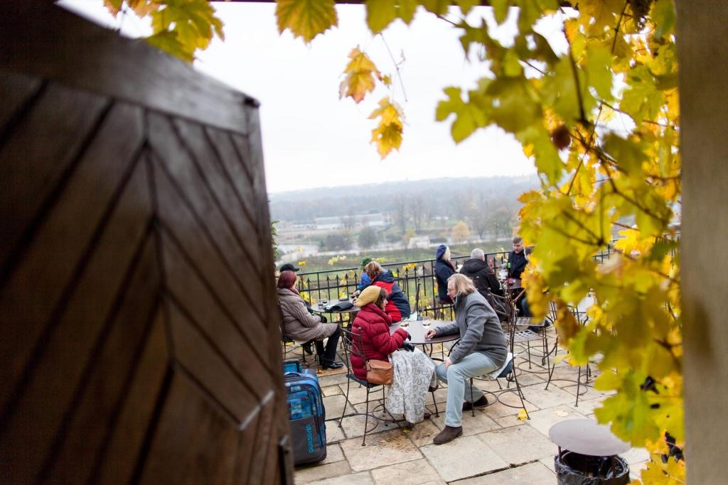 Svatomartinský přípitek na vinici sv. Kláry v Botanické zahradě