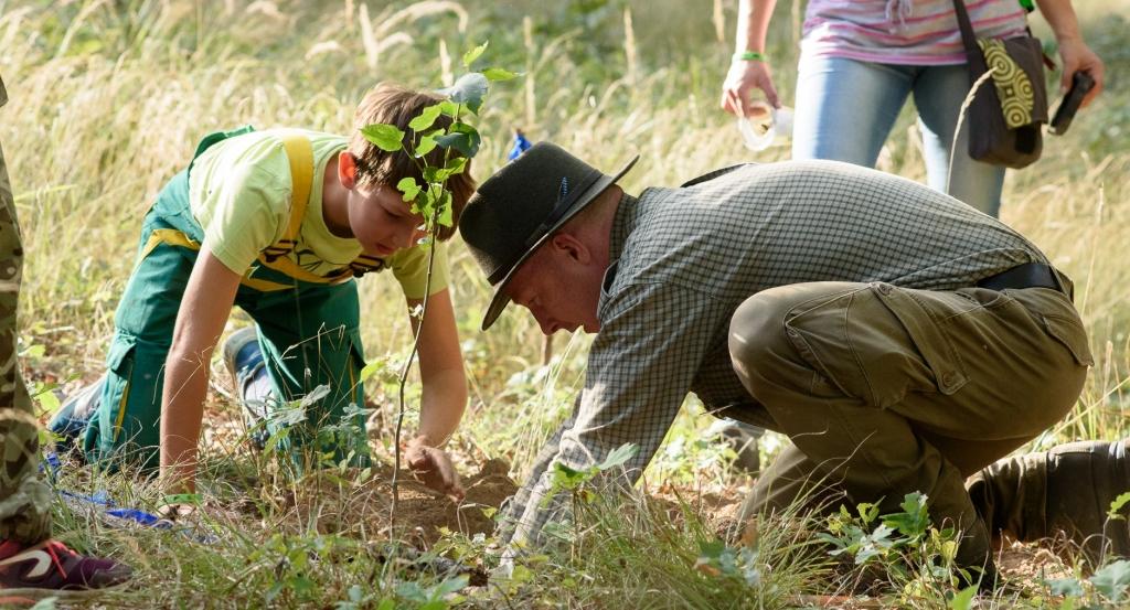 Zasaď strom - Oslav Den dřevorádů 2020