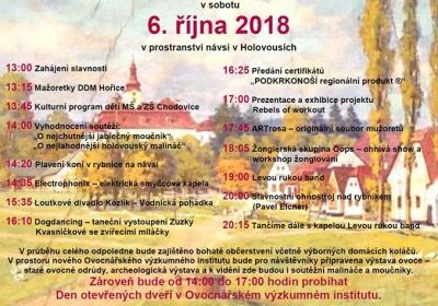 16. ročník Slavností holovouských malináčů 2018