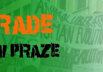 Veggie Parade 2015