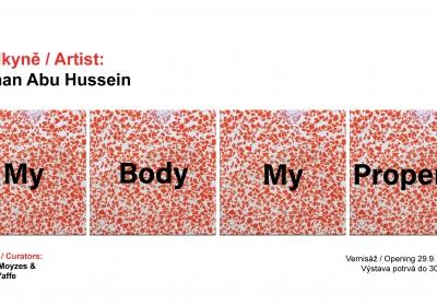 Moje tělo, můj majetek