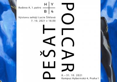 Výstava Pešat Polcar HYB4