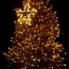 Slavnostní rozsvícení vánočního stromu v Litoměřicích 2021